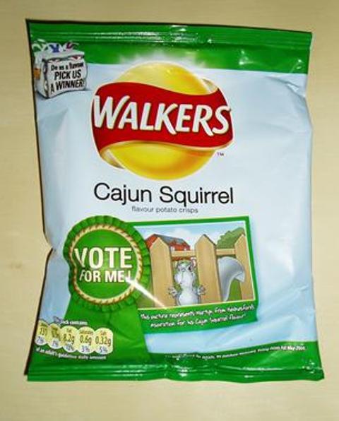 squirrel-chips1