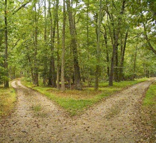 roads1
