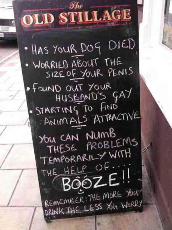 dog died