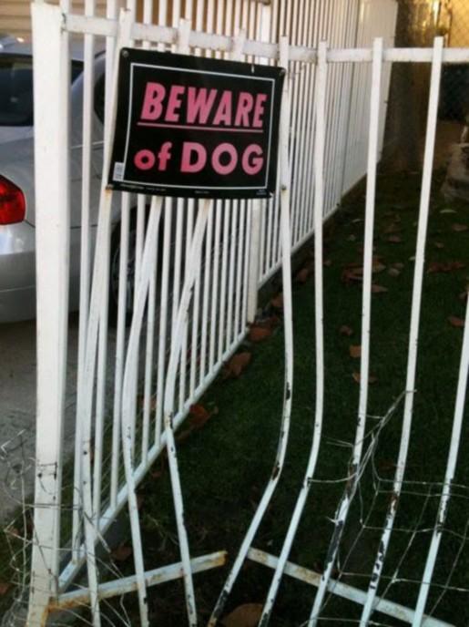 BEWARE OF DOG modified