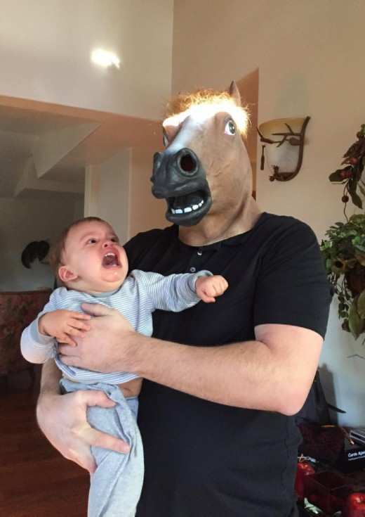 HORSE modified