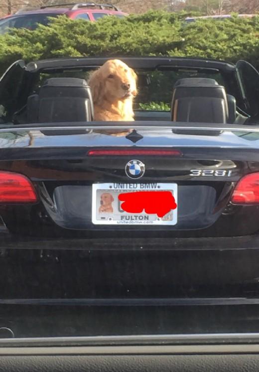 BMW modified