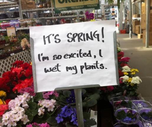 PLANTS modified