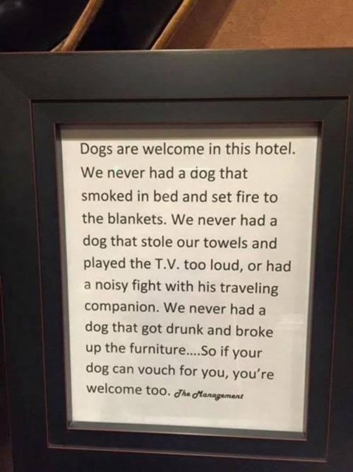 DOG HOTEL modified