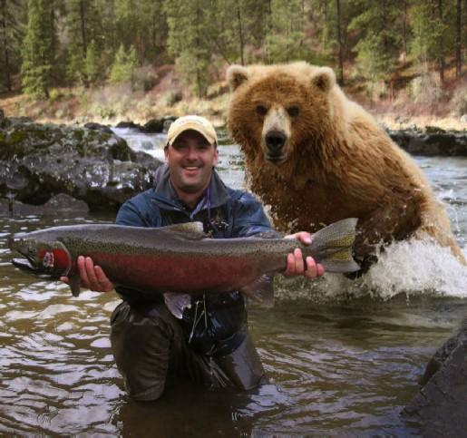 BEAR FISH modified