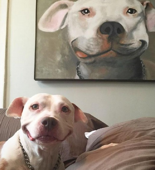 dog-smile-modified