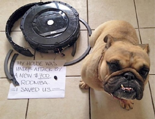 ROOMBA modified